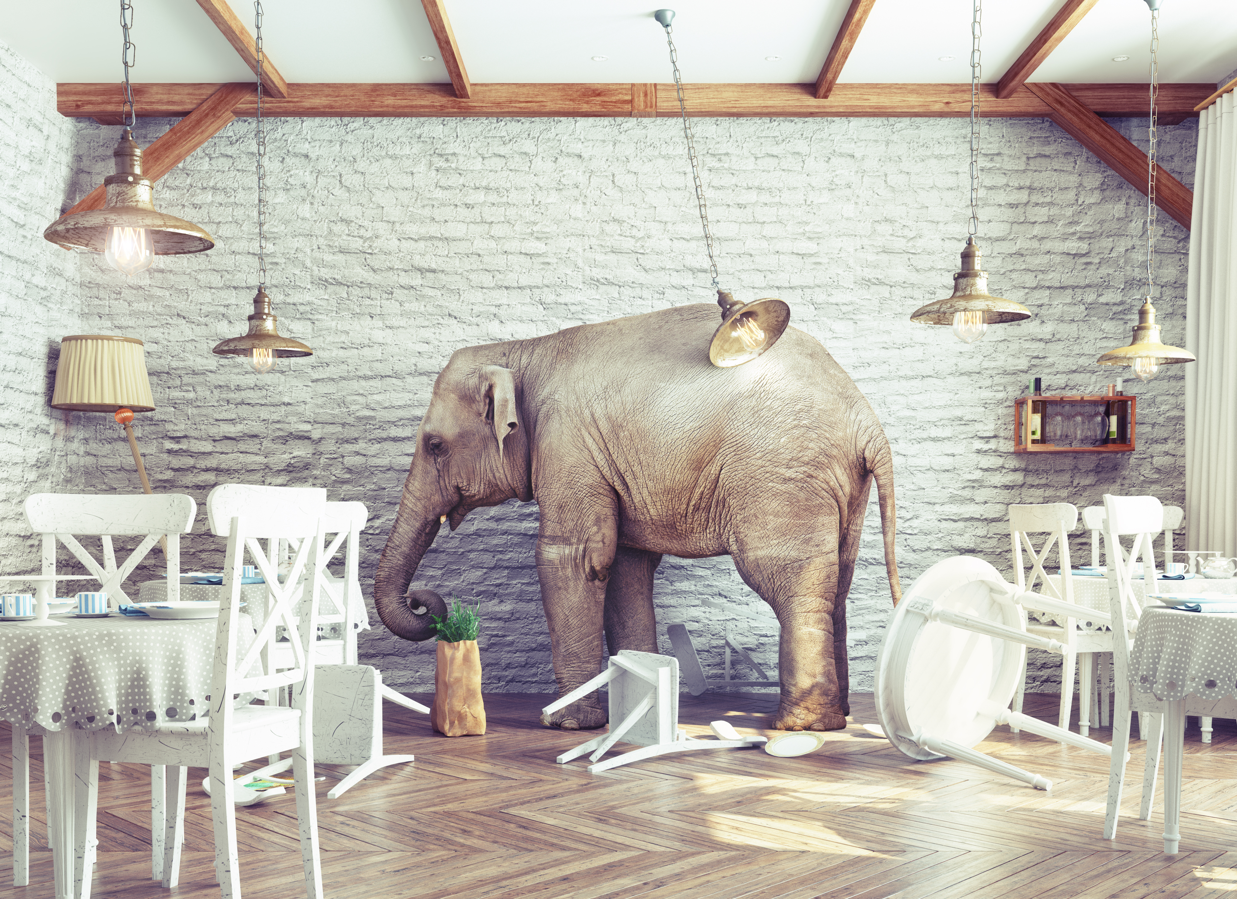 It's time to talk about the elephant in the cloud